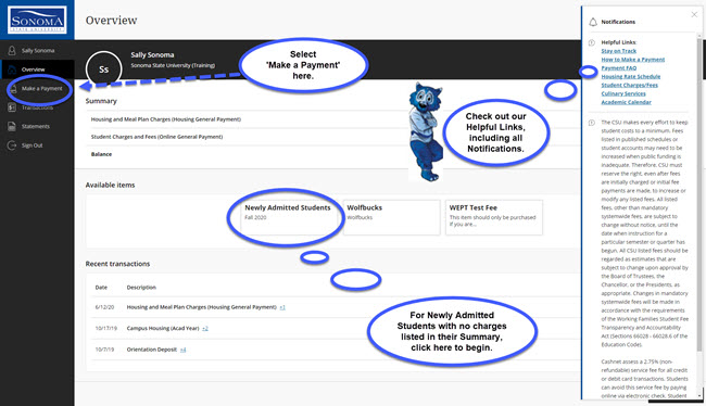 Example of online payment site