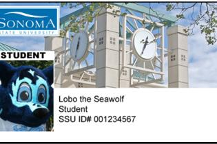 Sonoma State Univeristy ID Card
